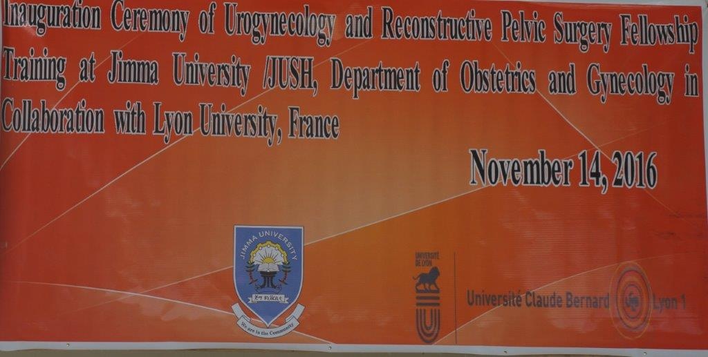 Collaboration between the universities of Lyons and Jimma - La
